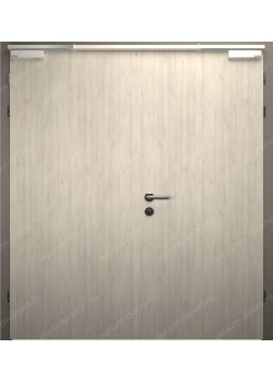 Дверь распашная глухая двустворчатая огнестойкая (Guard 30DUO2-1)