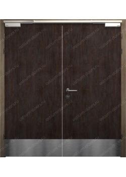 Дверь распашная глухая двустворчатая огнестойкая (Guard 30DUO2-4)