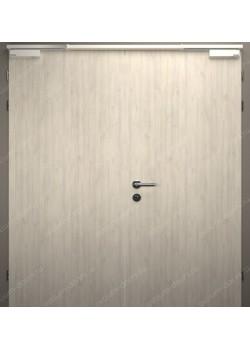 Дверь двустворчатая глухая огнестойкая (Guard 60DUO2-1)
