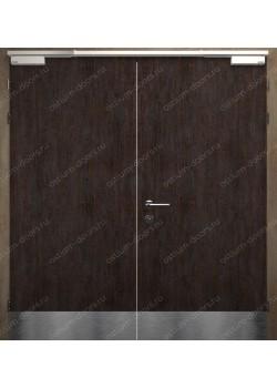 Дверь двустворчатая глухая огнестойкая (Guard 60DUO2-4)