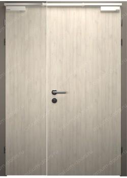 Дверь распашная глухая огнестойкая полуторная (Guard 30DUO1-1)