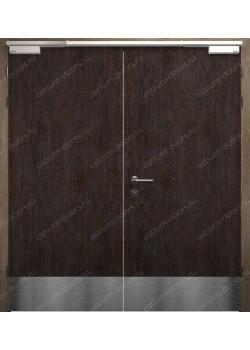 Дверь глухая двустворчатая огнестойкая (StillEI60DUO2-3)