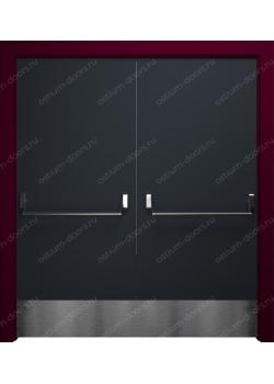 Дверь распашная глухая (PassDUO2-4)