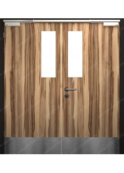 Дверь глухая остекленная двустворчатая огнестойкая (StillEI30DUO2-4)