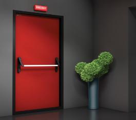 Двери эвакуационного выхода