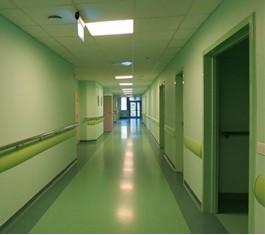 Двери для подвала, подсобных помещений